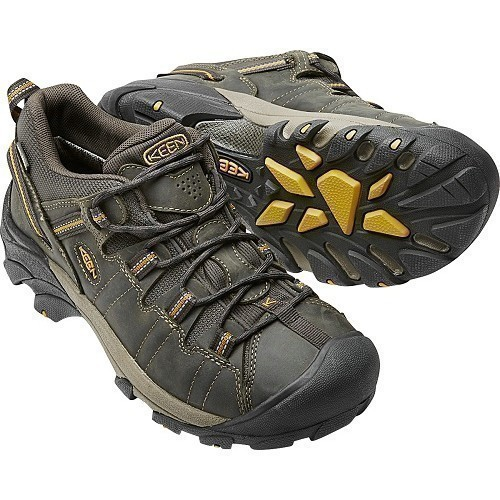 Targhee II Low Waterproof Hiker Thumbnail